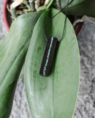 Ebony wooden pendant